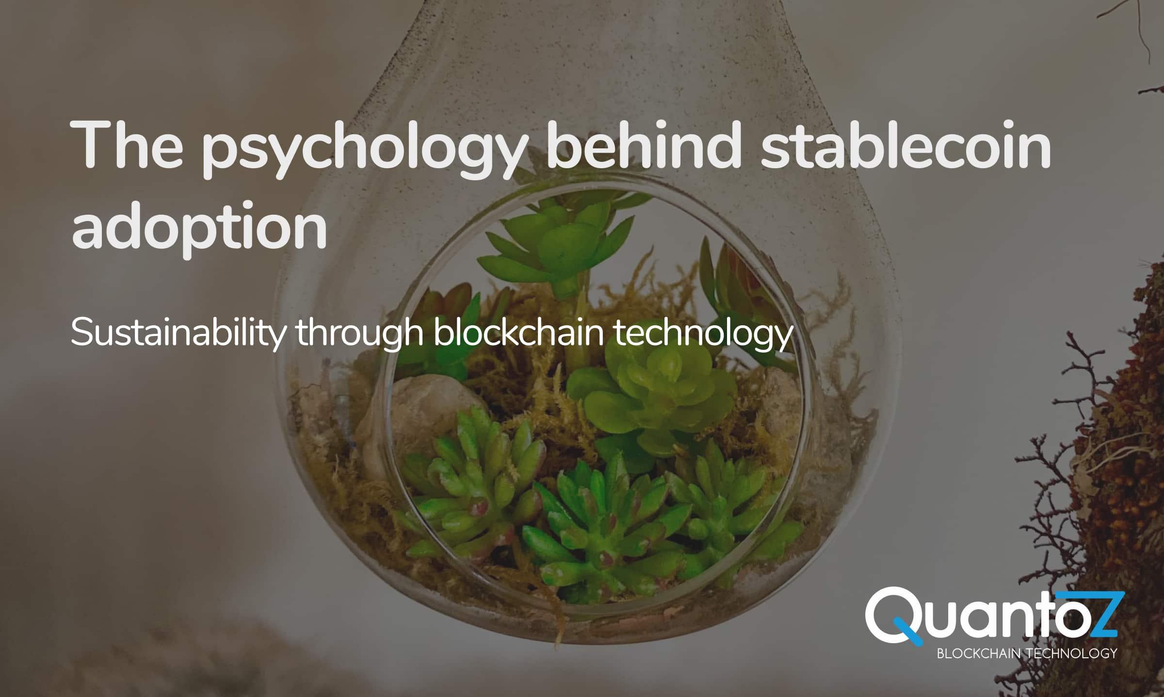 Stablecoin adoption
